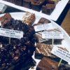 MINI CAKE SLICES